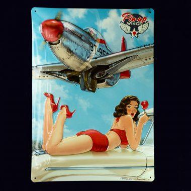 Blechschild-Pin-up-Wings-2