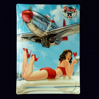 Blechschild-Pin-up-Wings-2